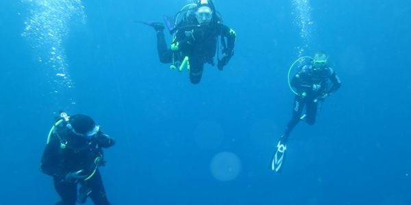 CC Dive